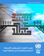 Capacity building toolkit on the analysis and measurement of a socio-economic inequalities in the Arab region cover (Arabic)