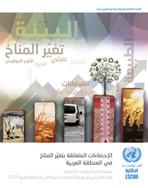 الإحصاءات المتعلقة بتغيُّر المناخ في المنطقة العربية: مجموعة من المؤشرات المقترحة إصدار خاص من مجموعة الإحصاءات البيئية في المنطقة العربية 2017 غلاف