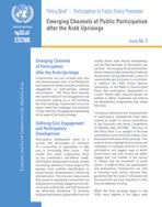 Emerging Channels of Public Participation after the Arab Uprisings, policy brief, No. 3 cover