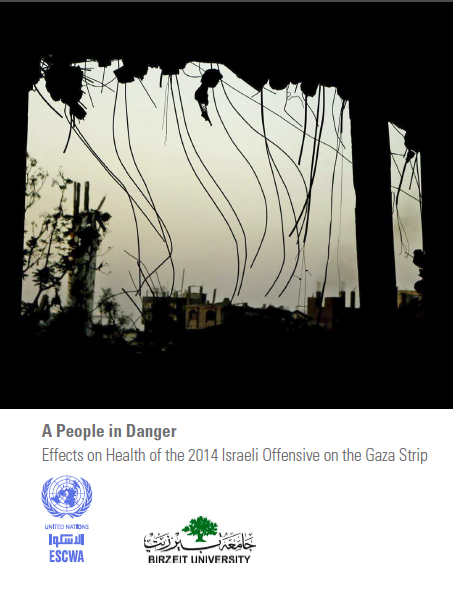 A People in Danger: Effects on Health of the 2014 Israeli Offensive on the Gaza Strip cover