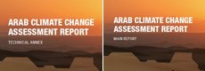 RICCAR Arab Climate Change assessment Report logo