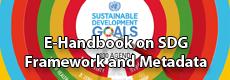 E-Handbook on SDG Framework and Metadata