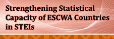Strengthening Statistical Capacity of ESCWA Countries in STEIs logo