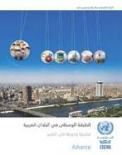 الطبقة الوسطى في البلدان العربية: قياسها ودورها في التغيير