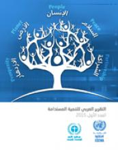 التقرير العربي للتنمية المستدامة، 2015 غلاف