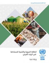 الطاقة الحيوية والتنمية المستدامة في الريف العربي غلاف