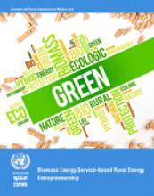 تنظيم مشاريع الطاقة الريفية القائمة على خدمات طاقة الكتلة الأحيائية غلاف (بالإنكليذية)