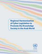 Regional Harmonization of Cyber Legislation to Promote the Knowledge Society in the Arab World