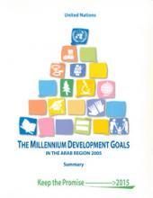 The Millennium Development Goals in the Arab Region 2005, Summary