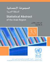 Statistical Abstract of the Arab Region,No.33 cover