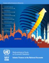 Methodological study on economic statistics: Islamic Finance in the National Accounts cover