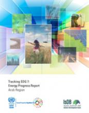 Tracking SDG 7: Energy Progress Report Arab Region cover