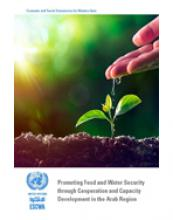 Promoting Food and Water Security through Cooperation and Capacity Development in the Arab Region cover