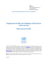 Employment Profile and Challenges of the Private Sector in Iraq