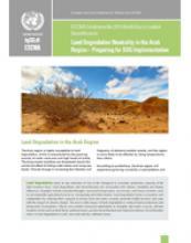 Land Degradation Neutrality in the Arab Region: Preparing for SDG Implementation cover
