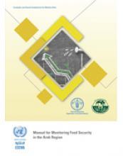 دليل لرصد الأمن الغذائي في المنطقة العربية غلاف (بالإنكليزية)