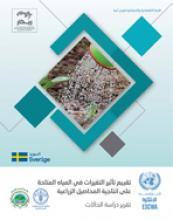 تقييم تأثير التغيرات في المياه المتاحة على انتاجية المحاصيل الزراعية في دول مختارة من المنطقة العربية غلاف