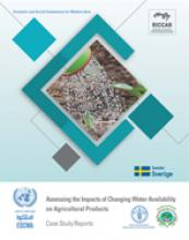Assessing the impacts of changing water availability on agricultural production in selected Arab countries cover