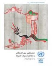 فلسطين بين الاحتلال واتفاقية جنيف الرابعة: حقائق وأرقام، 2014