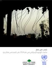 غلاف شعبٌ في خطر: تداعيات الهجوم الإسرائيلي عام 2014 على الصحة قطاع غزة