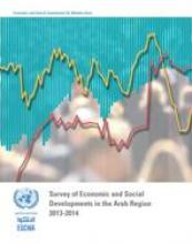Survey of Economic and Social Developments in the Arab Region 2013-2014