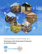 Trends and Impacts in Conflict Settings, No. 6: Developing a Risk-Assessment Framework for the Arab Region cover