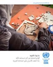 ما وراء القيود: استخدام أوامر الحماية لتعزيز استجابة متكاملة للتصدي للعنف الأسري في المنطقة العربية غلاف