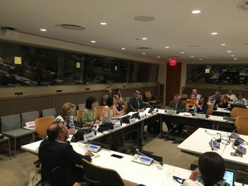 in session photo of ESCWA side event at the 9th conference of state parties to the CRPD