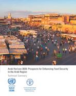 Arab Horizon 2030: Prospects for Enhancing Food Security in the Arab Region: Technical Summary cover