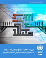 دليل بناء القدرات لتحليل وقياس  اللامساواة الاجتماعية والاقتصادية في المنطقة العربية غلاف