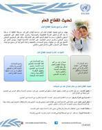 تحديث القطاع العام: عمل الاسكوا في العراق، 2013