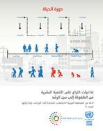 تداعيات النزاع على التنمية البشرية من الطفولة إلى سن الرشد: أدلة من المنطقة العربية الاتجاهات السائدة أثناء النزاعات وتداعياتها العدد 5 غلاف