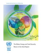 The Water, Energy and Food Security Nexus in the Arab Region cover