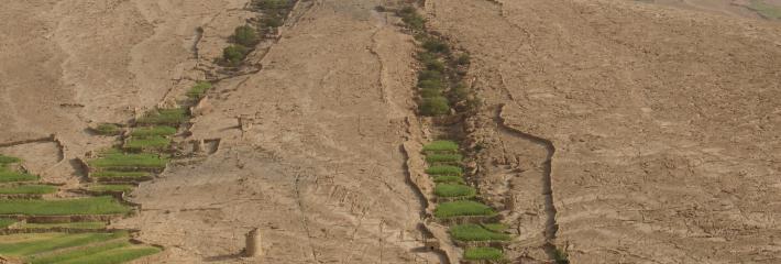 ﺍﻋﺘﻤﺎﺩ ﺍﻟﻤﻤﺎﺭﺳﺎﺕ ﺍﻟﻤﺴﺘﺪﺍﻣﺔ ﻹﺩﺍﺭﺓ ﺍﻟﻤﺴﺘﺠﻤﻌﺎﺕ ﺍﻟﻤﺎﺋﻴﺔ ﺍﻟﺘﻲ ﺗﺴﺎﻫﻢ ﻓﻲ ﺗﻮﻓﻴﺮ ﺍﻟﻐﺬﺍﺀ ﻭﺍﻟﻤﻨﺎﻓﻊ ﺍﻟﺒﻴﺌﻴﺔ. صورة التقطها الدكتور جرهارد ليكتنثايلر قرب ذيبين في محافظة عمران في اليمن.